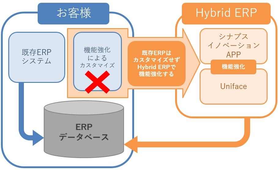 Hybrid ERP 図解